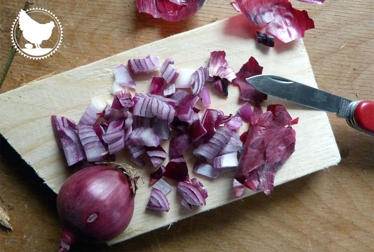 Zwiebeln gegen Schnupfen