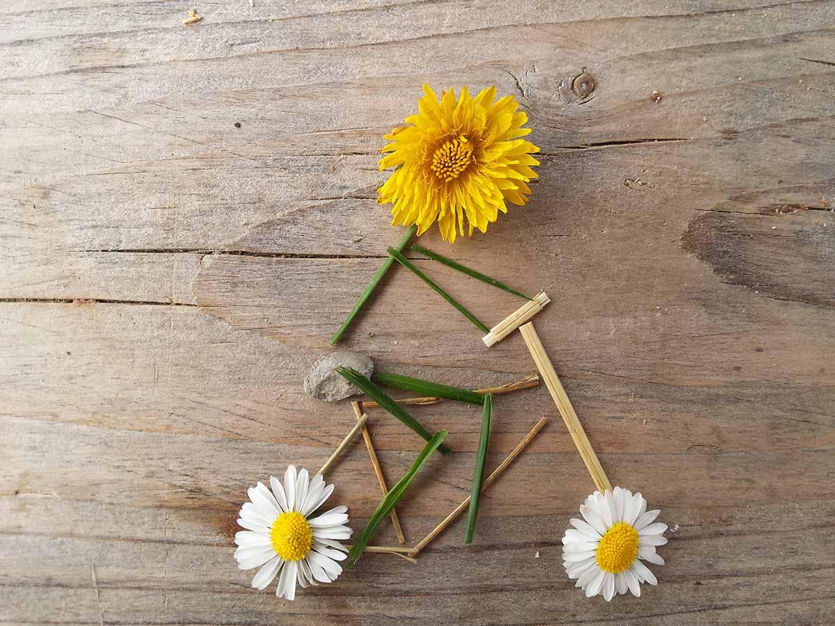 Spiele für Draußen - Fahrradfahrer aus Gras, Gänseblümchen und Butterblume